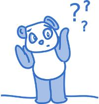What should I study - image of a confused bear