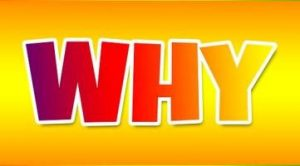"Studying the wrong thing - Image of the word ""Why"""