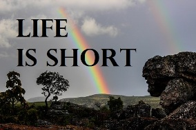 Studying the wrong thing - 'Life Is Short' image
