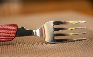 Image of a fork