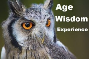 elders do know what's best image : image of an owl